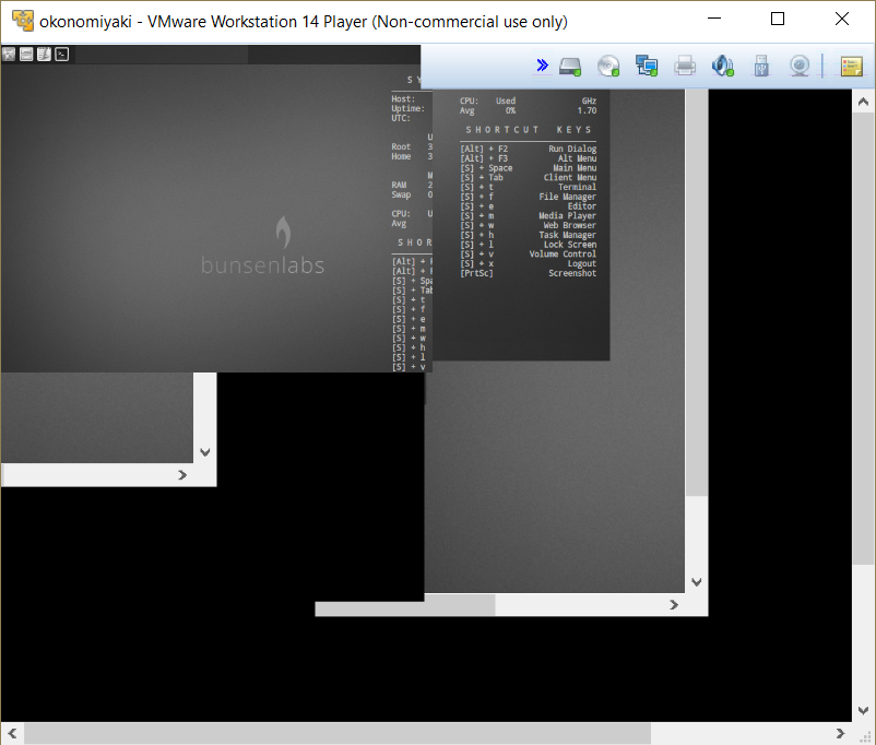 BunsenLabs VM looking glitchy in VMWare