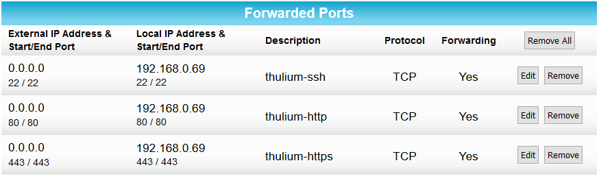 Forwarded ports set up on an Arris router